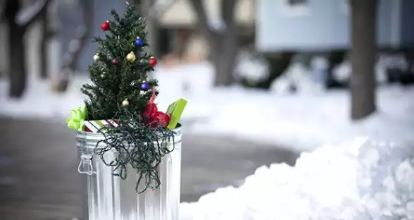Unusual-Christmas-Trees uses